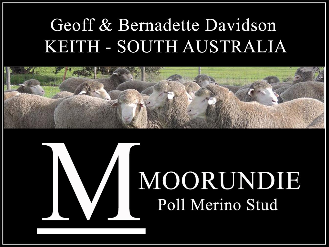 Moorundie Poll Keith