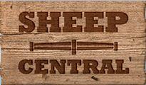 sheep central