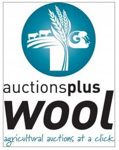 AUCTIONS PLUS WOOL