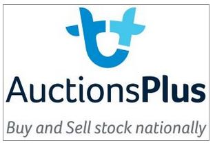 AUCTIONS PLUS