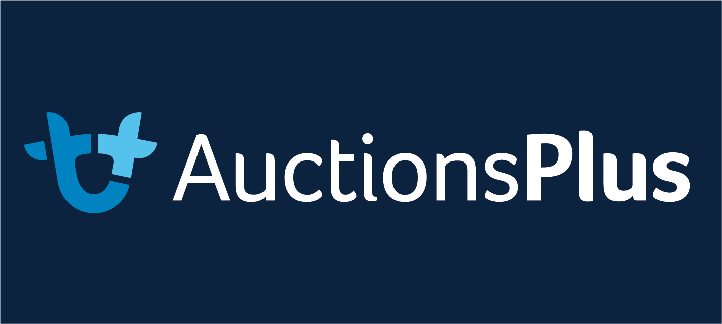 AUCTIONS PLUS BLUE