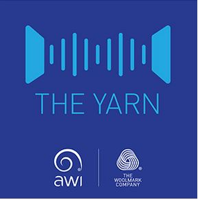 THE YARN (2)