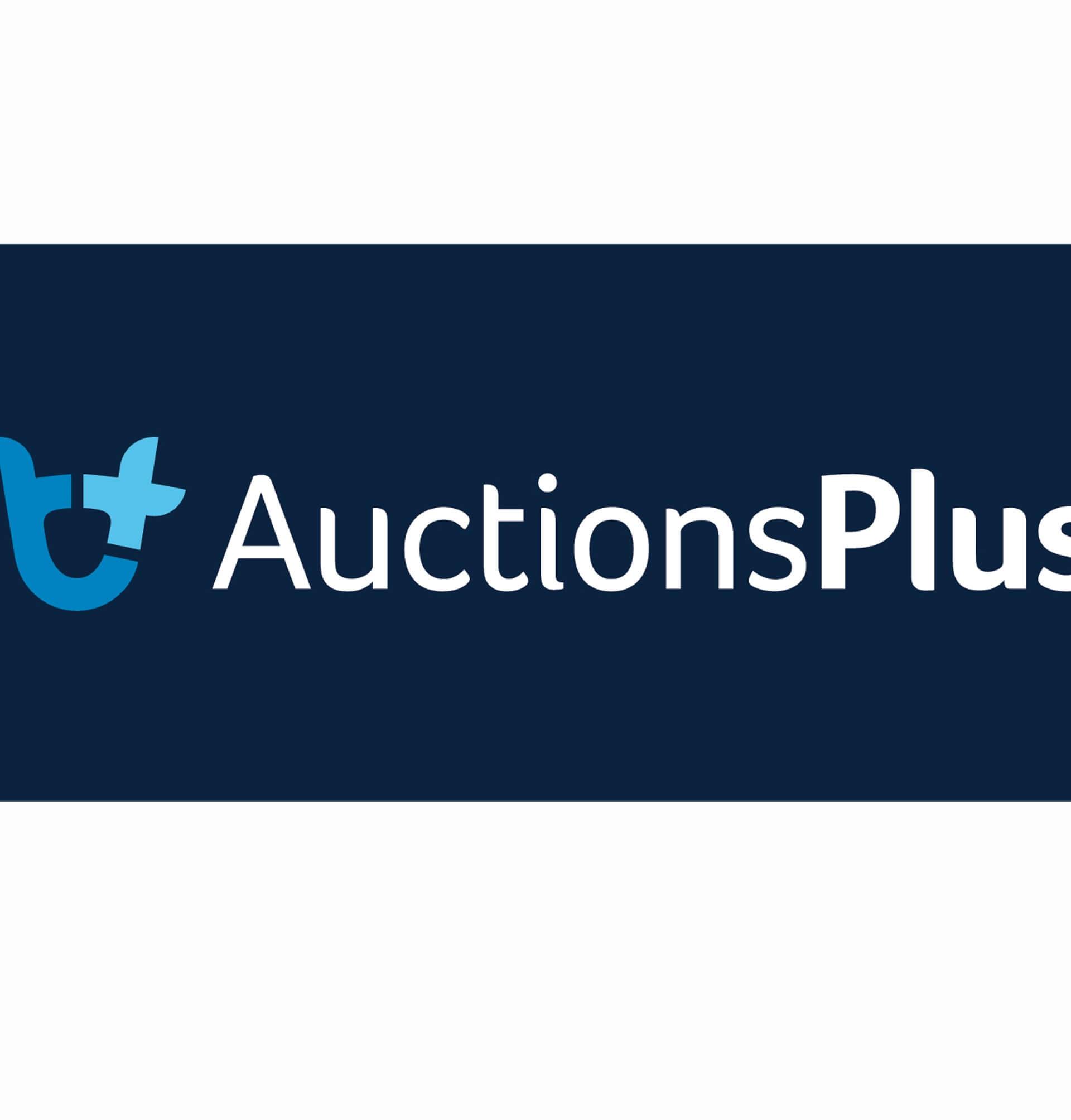 AUCTIONS PLUS BLUE